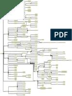 """Mapa Conceptual del Libro """"Cómo Nace El Derecho"""""""