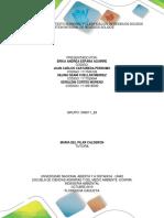 trabajo_colaboriativo_fase_1 .pdf
