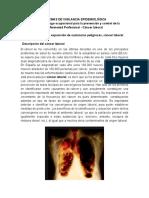 SISTEMAS DE VIGILANCIA EPIDEMIOLÓGICA