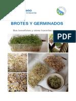 GERMINADOS Y BROTES 2019.pdf