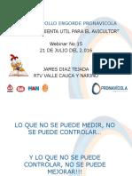 PlantillaPollo201607.pdf