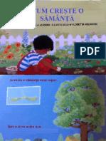 Cum creşte o sămânţă.pdf
