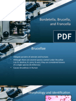 Brucella-and-Francisella