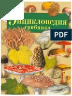 A_P_Umeltsev_Entsiklopedia_gribnika