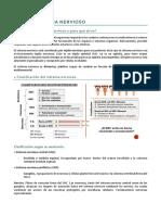 TEMA 1 vicente- sistema nervioso.pdf