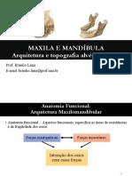MAXILA E MANDÍBULA - Arquitetura e topografia alvéolo-dental