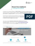 Instructivo Permiso de Circulación (1).PDF.pdf