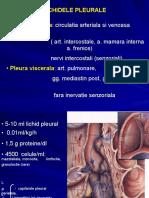 Curs 9-10-11 - Lichidele pleurale.pdf