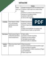 Audit Process Model