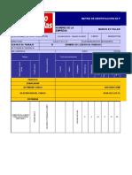 PLANTILLA DE MATRIZ DE IDENTIFICACION DE RIESGOS GTC 45-2 (2)