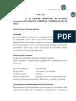 159803105-Modelo-Papeles-de-Trabajo-Auditoria-Operacional.doc