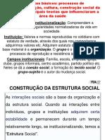 ConceitosSociológicos