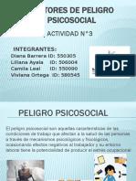 Diapositivas de riesgo publico11