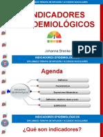 3. INDICADORES EPIDEMIOLÓGICOS JOHANNA BRENKE 2019