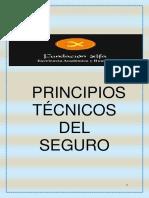 Principios tecnicos del seguro (2).pdf