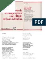 Jacques  Ferlay  -  Stèle de feuillages  pour une  effigie de Jean Malrieu