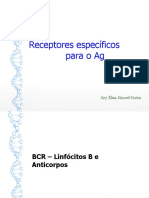 Anticorpos, Estudos e anatomias