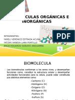 BIOMOLÉCULAS ORGÁNICAS E INORGÁNICAS.pptx