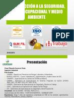 CAPACITACION - INTRODUCCIÓN A SSOMA.pdf