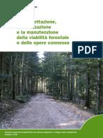 5_Viabilità forestale