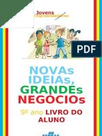 NOVAS IDEIAS GRANDES NEGOCIIOS