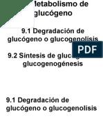 9.0 Metabolismo de glucógeno