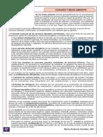 Ciudades y medio ambiente.pdf