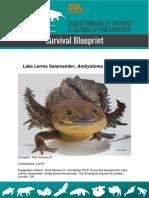 Survival_Blueprint_2019_Ambystoma-lermaense.pdf
