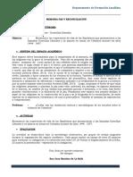 Guía BANDOLEROS.docx.pdf