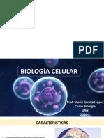 Presentación1_célula.pptx