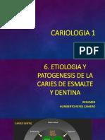 6, OK ETIOLOGIA Y PATOGENESIS DE LA CARIES DE ESMALTE  Y DENTINA.pdf