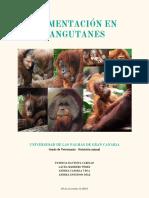 Alimentación de los orangutanes.pdf