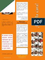 folleto_ponlacara[1]