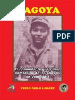 Magoya.pdf
