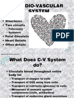 CARDIOVASCULAR SYSTEM.ppt