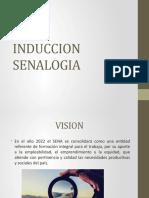 INDUCCION  SENALOGIA