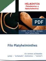 Aula sobre Helmintos - Platelmintos e Nematelmintos