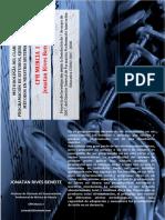 Trabajo Jonathan Rives Proramaciones Clarinete Elemental y Profesional.pdf
