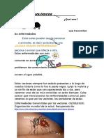 VECTORES BIOLÓGICOS.docx