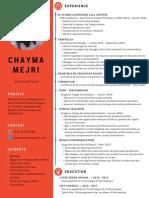 experience_2 (1).pdf