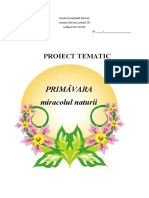TEMA 6 - Primavara