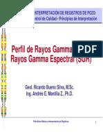 Cap03 Registro GR.pdf