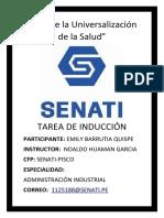TAREA DE INDUCCION