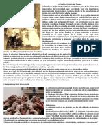 La Familia a Través del Tiempo.docx
