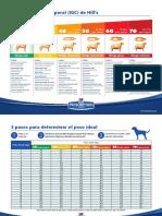 Indice grasa corporal perro