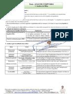 Analyse-du-Bilan.pdf