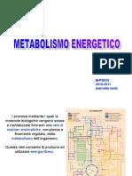 2 metabolismo energetico.ppt