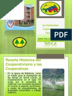 lascooperativas-140802155826-phpapp01 (1)