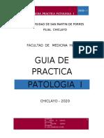 GUIA PRACT PATO I - 2020