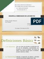 DESARROLLO EMBRIONARIO DE LOS INSECTOS.pptx